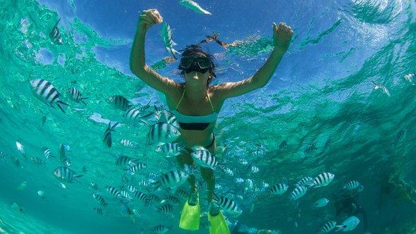 Подводное плаванье срыбами