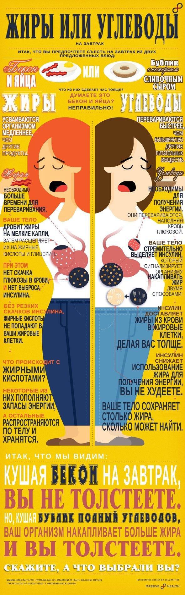 Что лучше жиры или углеводы? - инфографика