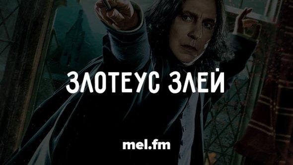 8 причин, почему Мария Спивак не должна переводить «Гарри Поттера»