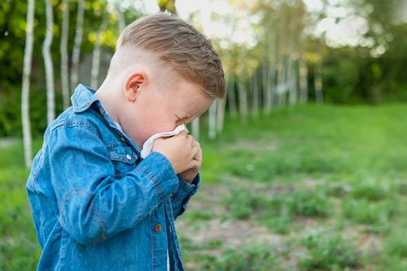 Аллергия на мел у детей thumbnail