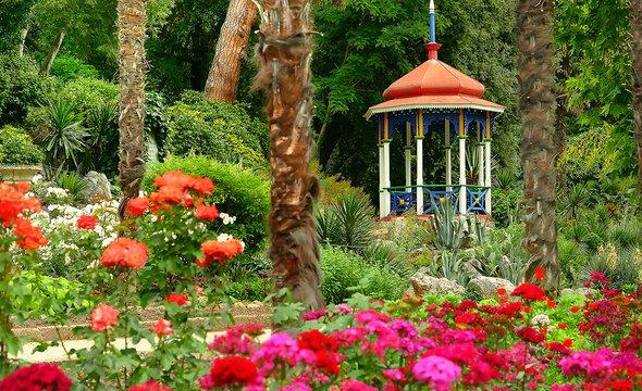 Ялта. Никитский ботаническийсад. Фото: Shutterstock / Belight