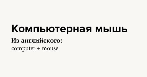 Компьютерная мышь Изанглийского: computer + mouse