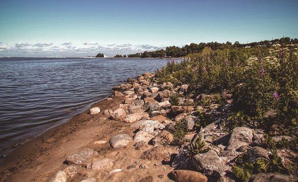 Берег Финского залива. Фото: Shutterstock / cucushonok