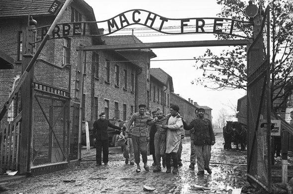 Ольга Игнатович / Освобождение концентрационного лагеря / Освенцим, Польша / конец января 1945